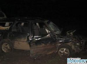 В Ростовской области водитель, совершивший пьяное ДТП, арестован