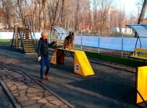 Все собаки Ростова должны побывать в этом интересном месте
