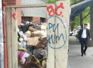 Тайную свалку с мертвыми крысами нашли за забором в центре Ростова