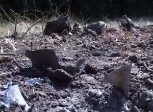 Специалисты проведут экспертизу фрагментов снарядов, разорвавшихся в Ростовской области. Видео