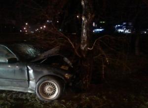 В Ростове ВМW вылетел с дороги и врезался в дерево: 2 пострадали