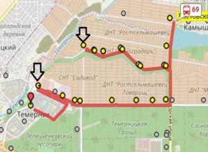 Спасти детей и родителей в Ростове от круговой езды с Золотистой до Темерника требует измученная девушка
