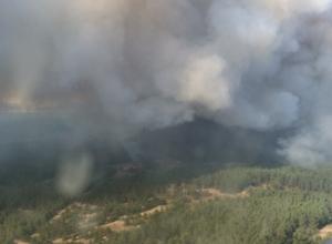 В Тарасовском районе из-за лесных пожаров введен режим ЧС