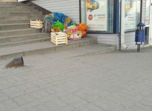 Бабушек с петрушкой показушно разогнали в Ростове после публичного нагоняя Кушнареву от Голубева