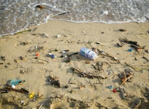 В Ростовской области 40 % пляжей не готовы к купальному сезону
