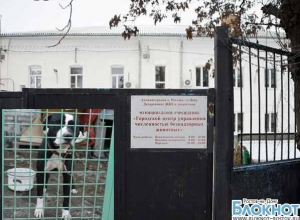 В Ростове директор центра безнадзорных животных подозревается в растрате денег