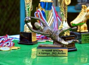 Турнир по футболу помог собрать деньги на установку мусорных контейнеров в Ростове