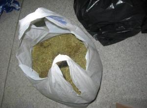 На Дону осудят кинолога, организовавшего преступную группу по сбыту наркотиков