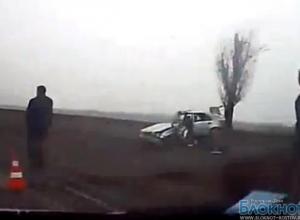В Ростовской области водитель на Mercedes погиб, врезавшись в дерево