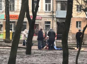 Опасным для жизни назвали Ростов общественники после гибели молодой женщины под упавшим деревом