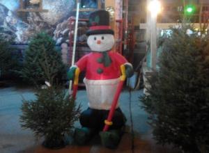 Новогоднее настроение в бесснежном Ростове создают едущие на лыжах по асфальту снеговики