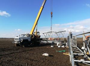 Нахально проложенная ЛЭП загубила виноградник фермеру под Ростовом