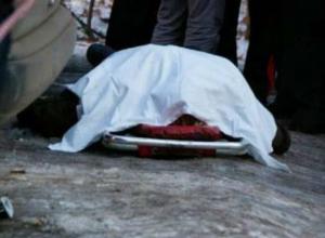 Сына фермера расстреляли в салоне микроавтобуса в Ростовской области