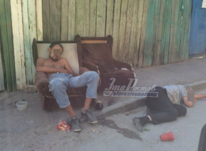 Утомившимся на солнышке «Сифону с Бородой» позавидовали жители Ростова