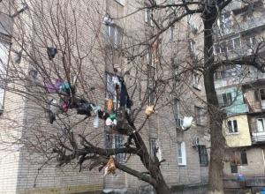 Жуткий и мерзкий 13-й район появился в Ростове