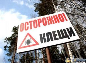 В Ростовской области почти 50 человек заболели Крымской геморрагической лихорадкой
