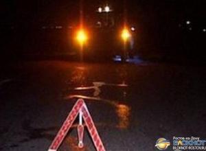 В Новочеркасске женщина-водитель наcмерть сбила 8-летнего ребенка