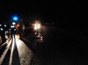 Следовавший в Ростов по воронежской трассе мужчина мучительно погиб под колесами фуры