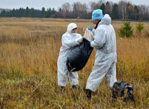 Ветеринарные врачи Ростовской области провели учения по ликвидации бешенства