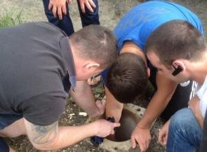 Уникальную операцию по спасению несчастной ондатры из колодца провели в Ростовской области