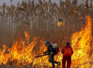 Масштабный пожар на окраине Ростова тушили без перерыва в течение пяти часов