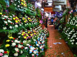 «Опасные» цветы продавали на цветочном рынке в Ростове