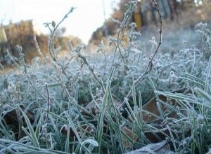 В Ростовской области вновь ожидаются заморозки