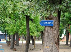 Прокурорская проверка в Ростовской области детского лагеря «Лагуна» констатировала полную разруху