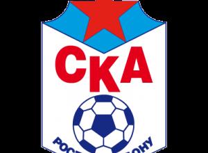 Болельщики СКА обратились к губернатору Голубеву за помощью, клуб на грани закрытия