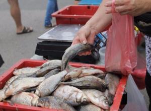 Ростовские чиновники вышли на борьбу с торговцами рыбой