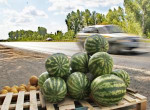 Отравленными арбузами и дынями торговал на обочине автострады житель Ростовской области