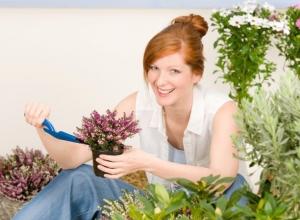 Наглая 28-летняя ростовчанка вместо дорогих цветов и растений отправляла клиентам сухую траву