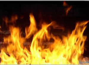 Мать и ребенок погибли на пожаре в Морозовском районе