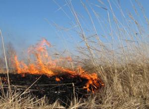 Сильные пожары угрожают Ростовской области в ближайшие три дня