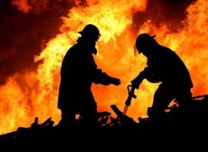На месте пожара возле Театральной площади в Ростове будет построен детский сад