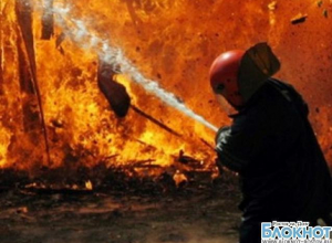 В Новочеркасске на пожаре в садовом домике погибли три человека