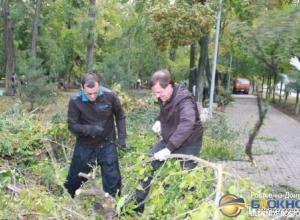Более 30 тысяч ростовчан участвовали в субботнике по ликвидации последствий стихии