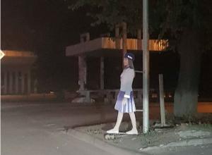 Стоящие вдоль дорог жуткие «девочки» до ужаса перепугали ростовчан