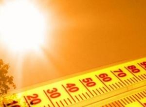 В Ростовской области ожидается аномальная жара: потеплеет до + 33°С
