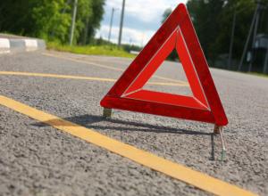 Столкновение с деревом оказалось смертельным для пожилого водителя Ростова