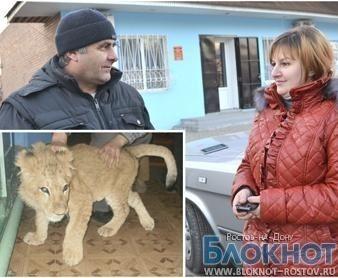 За львенком в Сальск приехала хозяйка из Дагестана