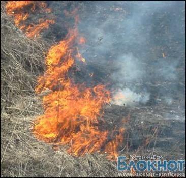 20 гектаров травы  горит в Ростовской области
