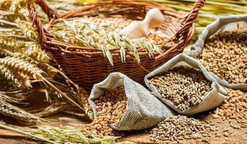 Сельхозпродукцию Ростовской области представят намеждународной выставке
