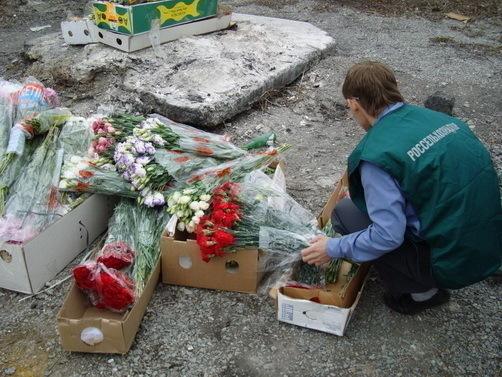На Дону уничтожили 75 ящиков зараженных  цветов