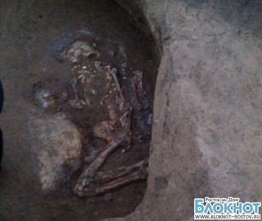 В Красном Сулине во время строительства завода нашли останки древних людей