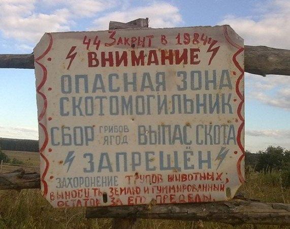 Природоохранная прокуратура через суд обязала правительство Ростовской области обустроить скотомогильник сибирской язвы
