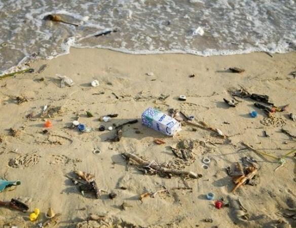 Городские пляжи Ростова и Батайска не готовы к летнему сезону