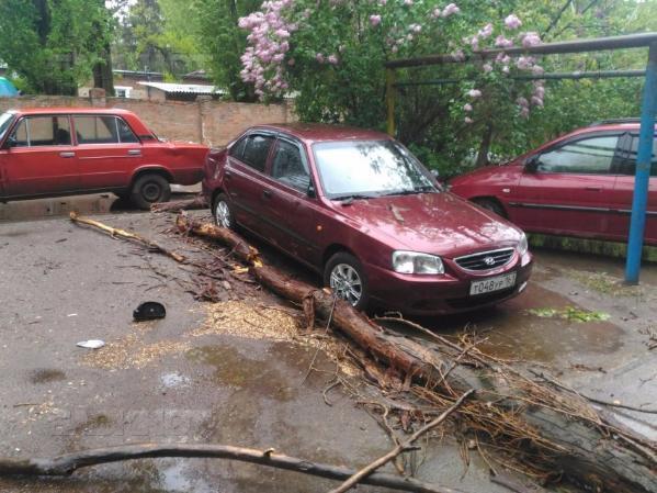 В Таганроге владельцы машин обнаружили свои авто под рухнувшими деревьями