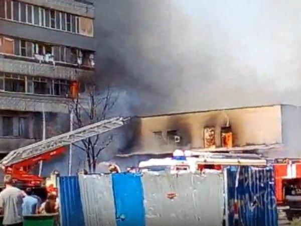 ВРостовской области произошел крупный природный пожар