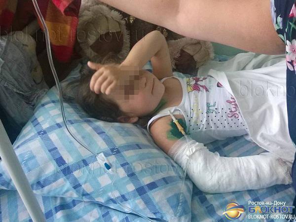 В Ростовскую больницу доставили 5-летнюю девочку, которой медведь откусил руку. Видео